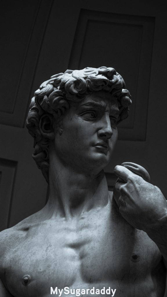 the statue of David, by Michelangelo